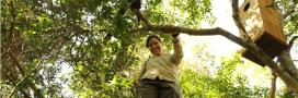 7 défenseurs de la nature récompensés aux Oscars de l'Environnement