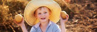 'Sauve les patates, mange des frites' : le SOS de la Belgique