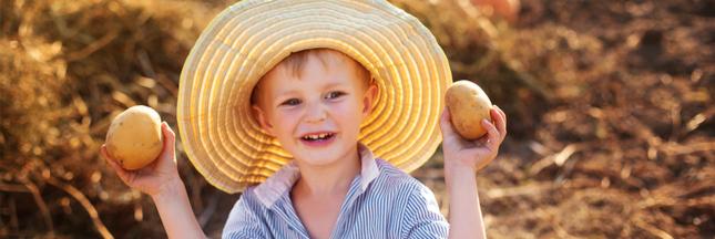 'Sauve les patates, mange des frites': le SOS de la Belgique