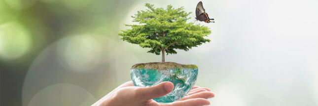 Seuls 7% des Français considèrent la biodiversité comme la priorité environnementale