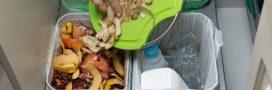 Recyclable, compostable, biodégradable: qu'est-ce que ça veut dire?