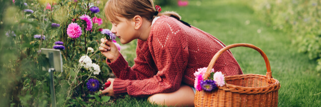 Comment et pourquoi démarrer un jardin de fleurs ?