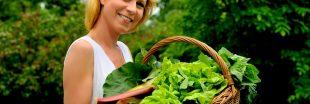 Cuisinez le panier de légumes du mois de mai !