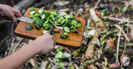 Les 6 erreurs à éviter pour un compost parfait