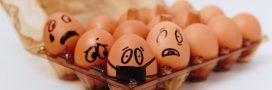 Rappel produit – Plus de 500.000 oeufs commercialisés en supermarchés