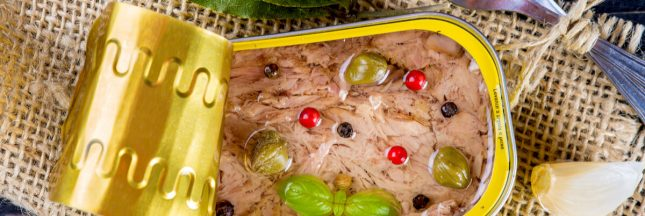 recette thon en boîte