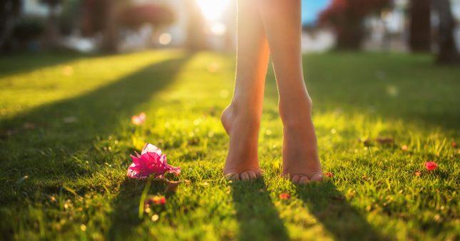 J'arrête de tondre la pelouse à tout bout de champ