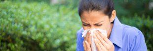 Allergie au pollen : la France est en alerte rouge