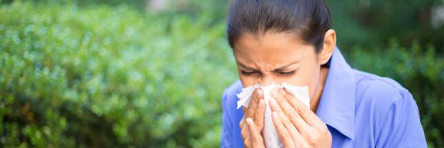 Allergie au pollen: la France est en alerte rouge