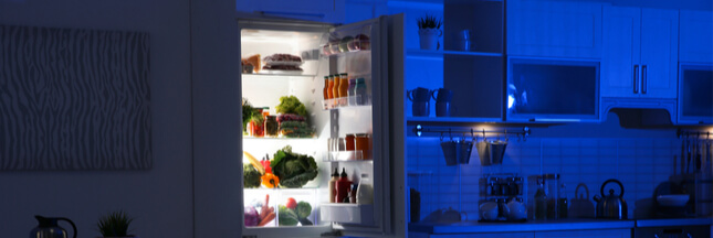 Plongée au coeur d'une journée de réfrigérateur