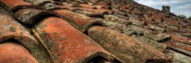 Faut-il nettoyer sa toiture? Conseils et astuces