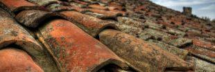 Faut-il nettoyer sa toiture ? Conseils et astuces