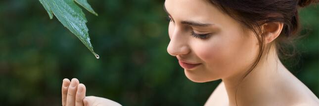 Rosacée : routine beauté et traitements naturels