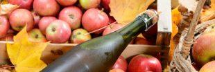 Après le vin, le cidre transformé en gel ou en biocarburant