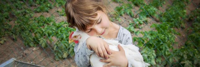 Un 'Défenseur des animaux' au gouvernement : pas suffisant selon les associations