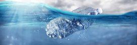 Les déchets plastiques dans l'océan pourraient tripler d'ici 2040