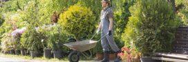Déduction fiscale pour travaux de jardinage: comment en bénéficier?