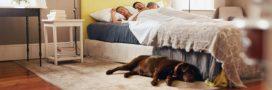 Les polluants toxiques de la chambre: où se cachent-ils et quels effets sur la santé?