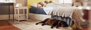Les polluants toxiques de la chambre : où se cachent-ils et quels effets sur la santé ?
