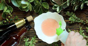 Luttez contre les moucherons dans votre maison naturellement
