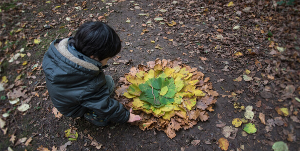 activité feuille d''automne
