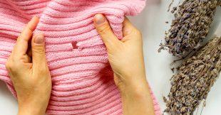 Antimites, toutes les astuces naturelles et efficaces