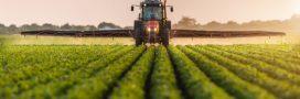 Pesticides: l'Europe exporte massivement des produits interdits dans l'Union
