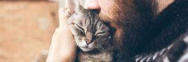Covid-19: le virus circule aussi chez les animaux domestiques