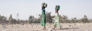 Financements climat : les gros mensonges des pays riches