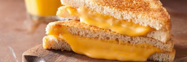 Les substances que nous cache... le fromage burger