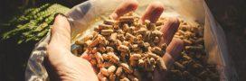 Comment bien choisir ses pellets de bois?