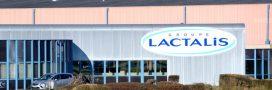 Scandale: des célèbres desserts Lactalis fabriqués avec du mouillage  destiné aux cochons