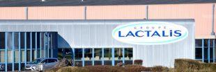 Scandale : des célèbres desserts Lactalis fabriqués avec du mouillage  destiné aux cochons
