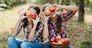 sondage aliment automne