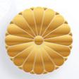 chrysanthème japon