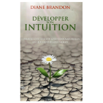 developper intuition