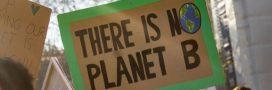 L'écocide sera puni et deviendra un délit (mais pas un crime)