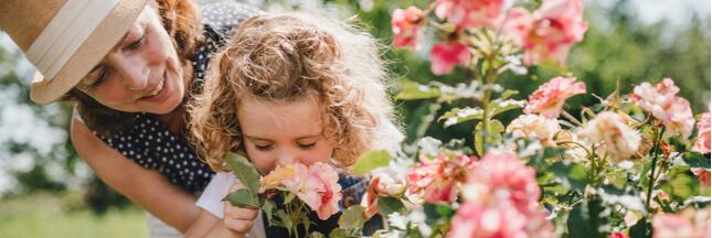 Jardin – Nos 5 astuces et conseils les plus lus en 2020