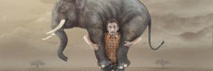 Le poids de ce qu'a fabriqué l'Homme dépasse celui des êtres vivants