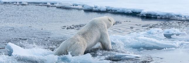 Plus 1,5°C, le seuil dangereux qui pourrait être atteint 20 ans plus tôt que prévu
