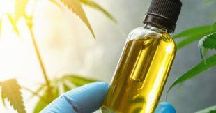 L'huile de CBD contre les douleurs : quand et comment l'utiliser ?