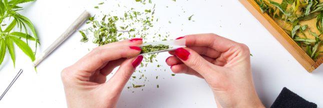 Cannabis récréatif: une consultation citoyenne lancée en France