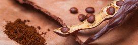 Graine de caroube, bienfaits et vertus minceur