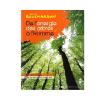 energie arbres
