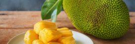 Le jacquier, un fruit qui remplace la viande