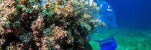Microplastiques dans les océans : le point de non retour est-il atteint ?