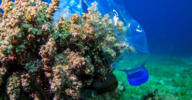 Microplastiques dans les océans: le point de non retour est-il atteint?