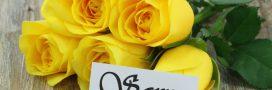 Faites parler vos bouquets! La signification des fleurs
