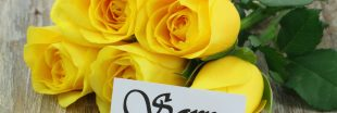 Faites parler vos bouquets ! La signification des fleurs