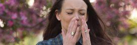 Allergies: le printemps est à nos portes, les pollens sont déjà là